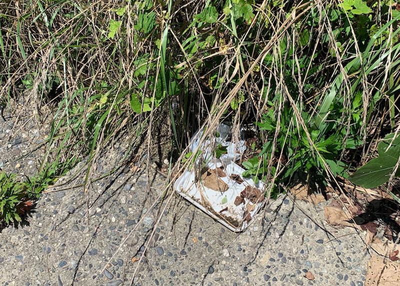 岩ヶ崎に捨てられたゴミ